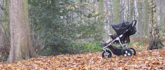 Best Buggy Searching For The Perfect Pushchair Best Buggy